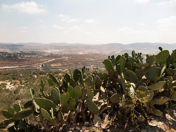2016 within borders kallah