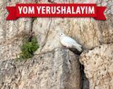 2017 jerusalem day thmb3